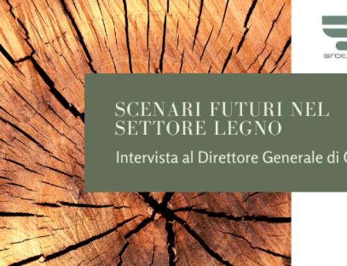 Scenari futuri nel settore legno – Intervista al Direttore Generale di Cosmob