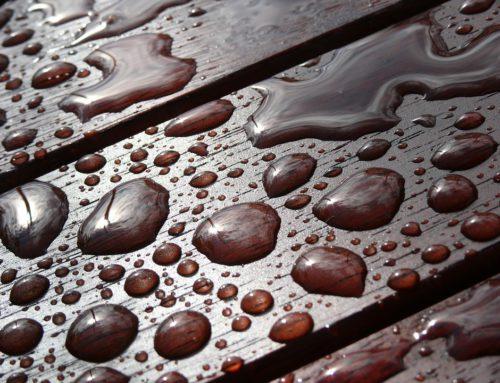 Okumè: il legno idrorepellente più usato nel settore navale
